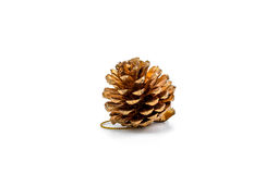 Pine cone christmas ornament accessories Royalty Free Stock Photos