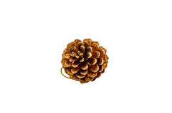 Pine cone christmas ornament accessories Royalty Free Stock Images