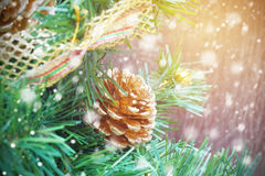 Pine cone, Christmas ornament, on tree with snow falling Royalty Free Stock Photography