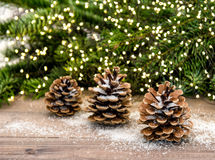 Pine cone and christmas tree branches. Lights decoration Royalty Free Stock Photo