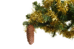 Pine cone on christmas tree Stock Images