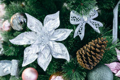 Pine cone on a Christmas tree Stock Photo