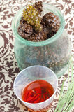 Pine cone cough syrup. Herbal medicine: Pine cone cough syrup on the table Stock Photography