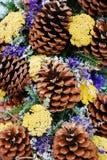 Pine Cone Decoration Stock Photography