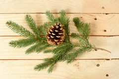Pine cone on fir branch a wooden Stock Images