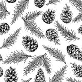 Pine cone and fir tree seamless pattern. Botanical hand drawn  Royalty Free Stock Photo