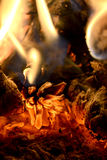 Pine cone on fire Royalty Free Stock Image
