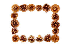 Pine cone frame Stock Images