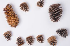 Pine Cone Frame Flat Lay Top View White Background. A Pine Cone Frame Flat Lay Top View White Background Royalty Free Stock Photos