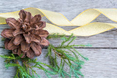 Pine Cone and golden ribbon Stock Image