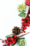Pine cone and holly berries. On  white background Royalty Free Stock Images