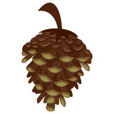 Pine Cone Icon. Vector Illustration of Pine Cone Icon Stock Images