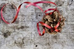 Pine cone ornament Stock Images