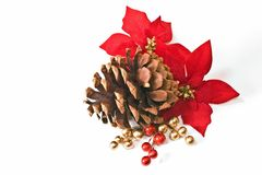 Pine Cone and Poinsettia Royalty Free Stock Image