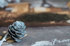 Pine cone, postcard, Texture. Christmas decorations and gifts, Background Royalty Free Stock Photography