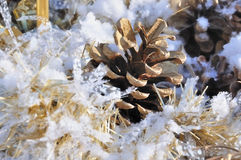 Pine cone in snow with golden wreath Royalty Free Stock Photo