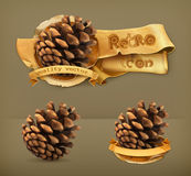 Pine cone, vector icons. Pine cone, retro vector icons Royalty Free Stock Image