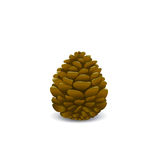 Pine cone vector Stock Photo