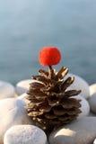 Pine Cone on White Pebbles Stock Photo