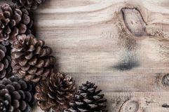 Pine cone on wood background Stock Photos