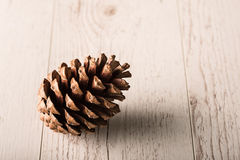 Pine cone on a wooden background Stock Photos