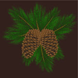 Pine cones. Vector illustration of pine cones with pine needles Royalty Free Stock Photography