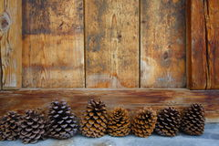 Pine cones. Many pine cones as decoration under a window Stock Images