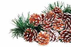 Pine Cones. And christmas garland on white background Royalty Free Stock Photography