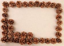 Pine cones arranged on the sand. Stock Photos