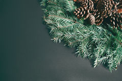 Pine cones background. Royalty Free Stock Photography