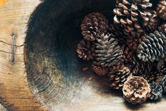 Pine Cones Background. Many Cones In Rustic Wooden Bowl. Pine Cones, Close Up. Autumn, Winter Decoration. Grunge Style. Christmas Stock Photos