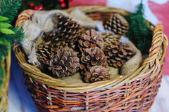 Pine cones in a basket. Christmas Decor Stock Images