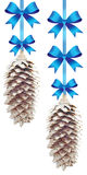 Pine cones with blue bows Stock Images