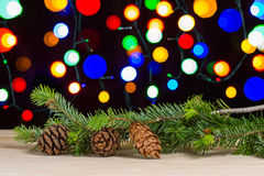 Pine cones and branch Stock Photo