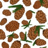 Pine cones with pine branches seamless background. Pine cones with pine branches in tattoo style seamless pattern Royalty Free Stock Images