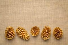 Pine cones on burlap canvas stock photo