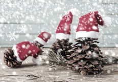 Pine cones with christmas hat Royalty Free Stock Photos