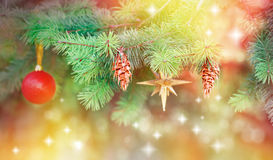 Pine cones and and Christmas symbols on Christmas tree Stock Images
