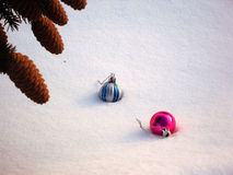 Pine cones and Christmas Toy Royalty Free Stock Photography