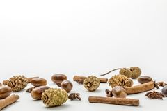 Pine cones, cinnamon and acorns royalty free stock photography