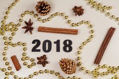 2018, pine cones, cinnamon sticks, star anise and pearl tinsel Stock Photography