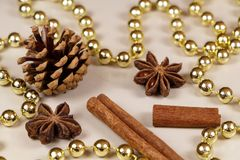 Pine cones, cinnamon sticks, star anise and pearl tinsel Stock Photography