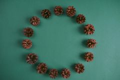 Pine cones circle on green background. Design mockup. Pine cones circle on green background Stock Photography