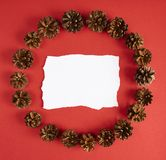 Pine cones circle on red background. Design mockup. Pine cones circle on red background Royalty Free Stock Photos