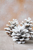 Pine cones covered with artificial snow Royalty Free Stock Photography