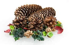 Pine cones with decoration. Pine cones isolated on white background royalty free stock photography