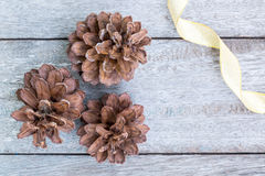 Pine Cones and golden ribbon Royalty Free Stock Images