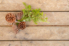 Pine cones and green branch on wood board Royalty Free Stock Image
