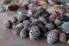 Pine cones. Many pine cones lying on a table Stock Photos