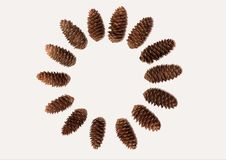 Pine cones moving in a circle clockwise. Winter composition, round frame made of pine cones on white background. Flat lay, top view stock video